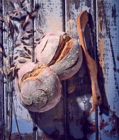 Sour Dought Bread